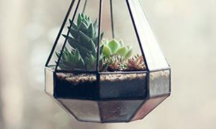 Diy Beautiful Planter