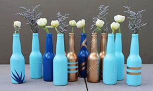 Great Bottle Craft Idea