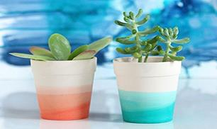 Diy Colorful Planter