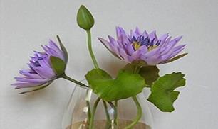 DIY Polymer Clay Lotus Flower