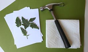 Diy Hammered Leaf Prints