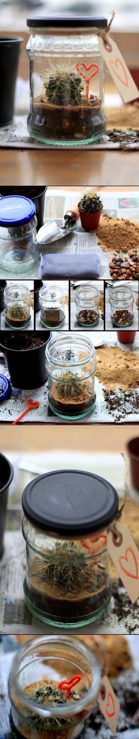15  DIY Terrarium ideas b45a5