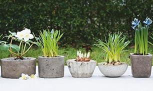 DIY Concrete Mini Planters