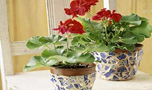DIY Mosaic flower pots made from recycled china