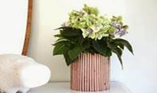DIY Newspaper Decor Flower Pot