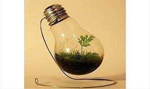 Great Light Bulb Diy Idea