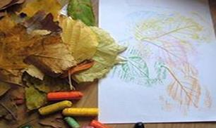 DIY Leaf Drawings Pictures