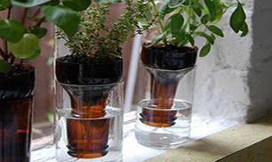 Make Beautiful Bottle Planter