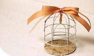 DIY mini bird cage